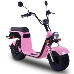 Citycoco HR8 1 Pink B